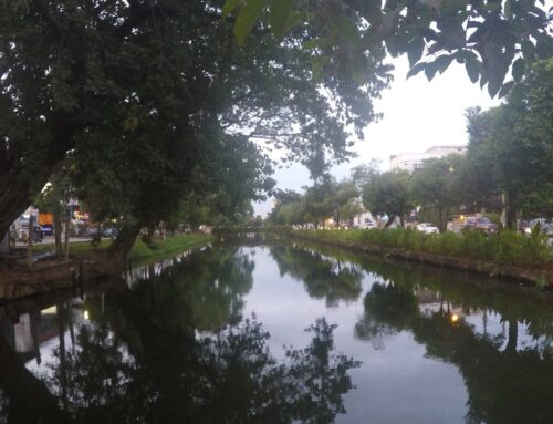 Update: Chiang Mae